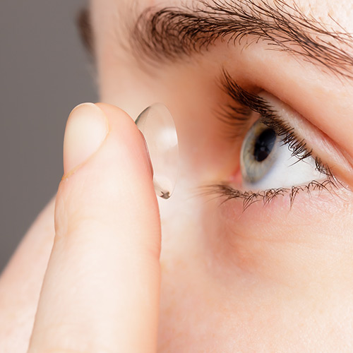 contact lenses esterhazy